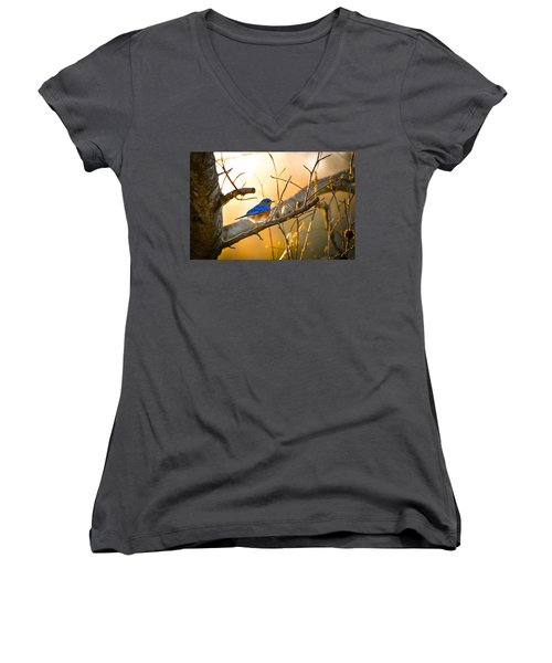In The Light Women's V-Neck T-Shirt (Junior Cut) by Shelby  Young