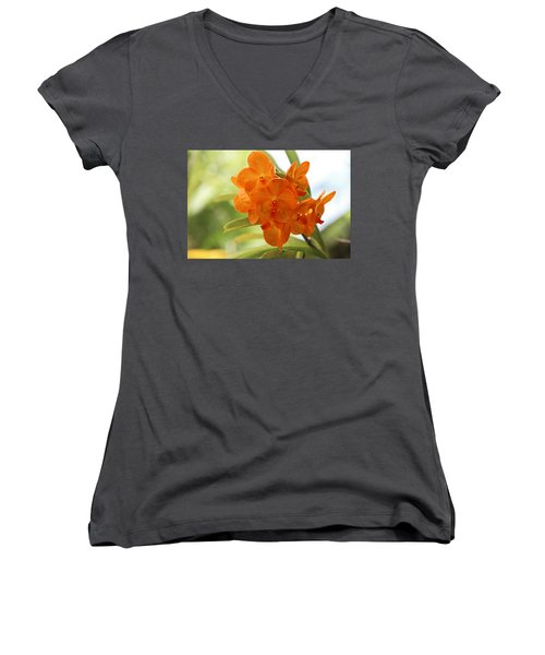 Women's V-Neck T-Shirt featuring the photograph In This World by Michiale Schneider