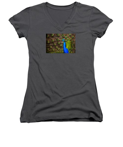 Women's V-Neck T-Shirt (Junior Cut) featuring the photograph India Blue by Rikk Flohr