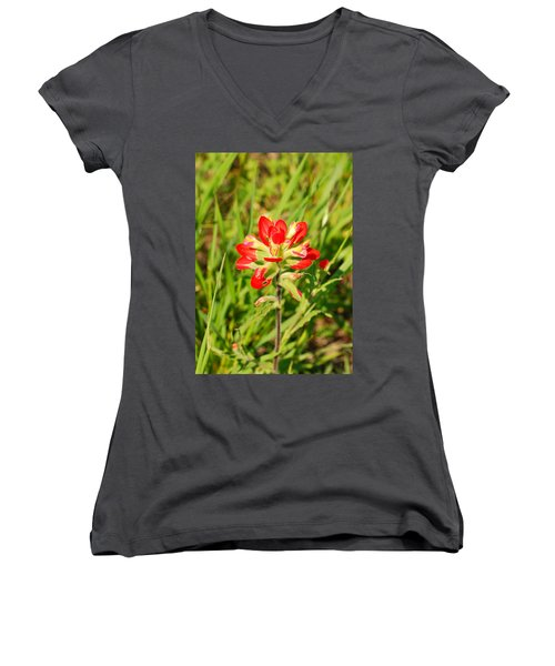 Indian Paintbrush Close Up Women's V-Neck (Athletic Fit)