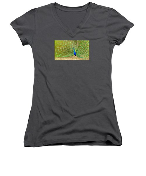 Indian Peacock Women's V-Neck (Athletic Fit)