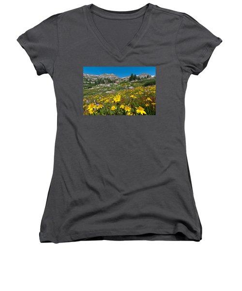 Indian Peaks Summer Wildflowers Women's V-Neck