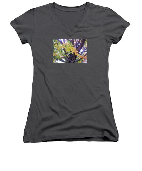 Indian Tree Women's V-Neck T-Shirt (Junior Cut) by Kristine Nora