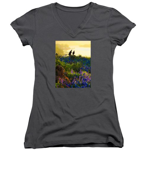 Da228 Inks Lake Love Daniel Adams Women's V-Neck T-Shirt