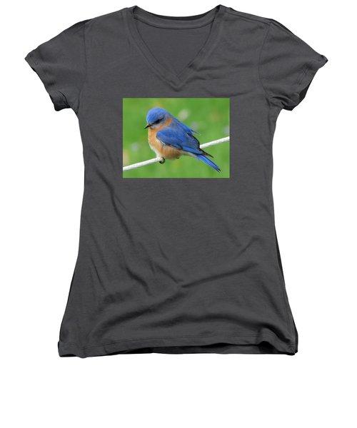 Intense Blue Bird Women's V-Neck (Athletic Fit)