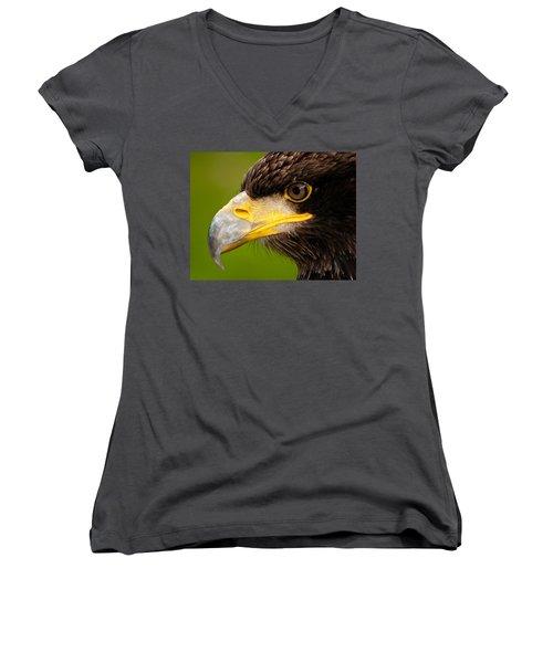 Intense Gaze Of A Golden Eagle Women's V-Neck T-Shirt