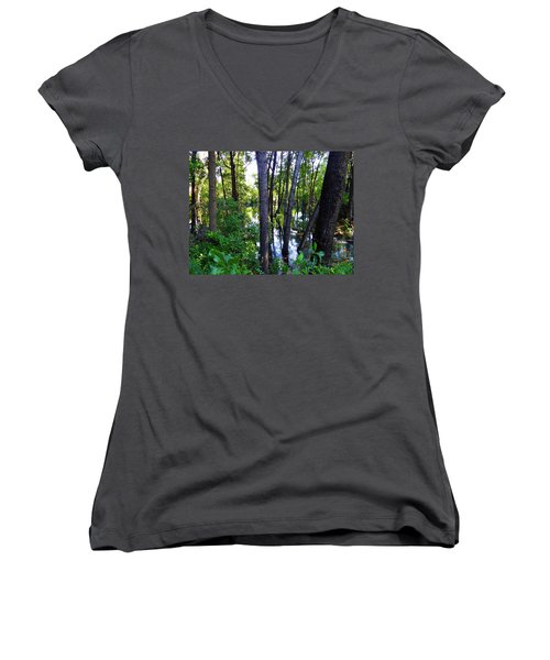 Interior Lake Chale Island Women's V-Neck (Athletic Fit)