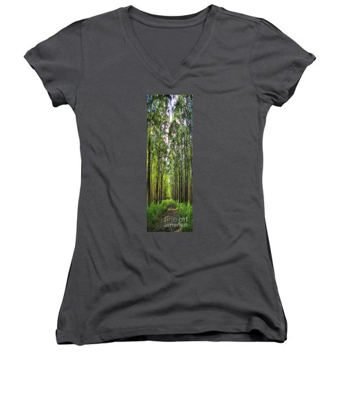 Women's V-Neck T-Shirt (Junior Cut) featuring the photograph Into The Forest I Go by DJ Florek
