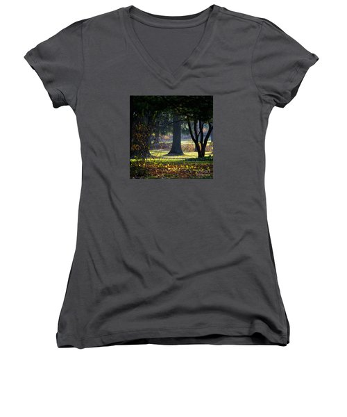 Intrigued By The Light Women's V-Neck (Athletic Fit)