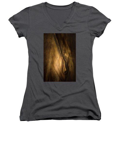 Intrusion Women's V-Neck T-Shirt (Junior Cut) by Peter Scott