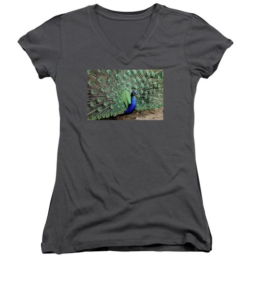 Iridescent Blue-green Peacock Women's V-Neck T-Shirt