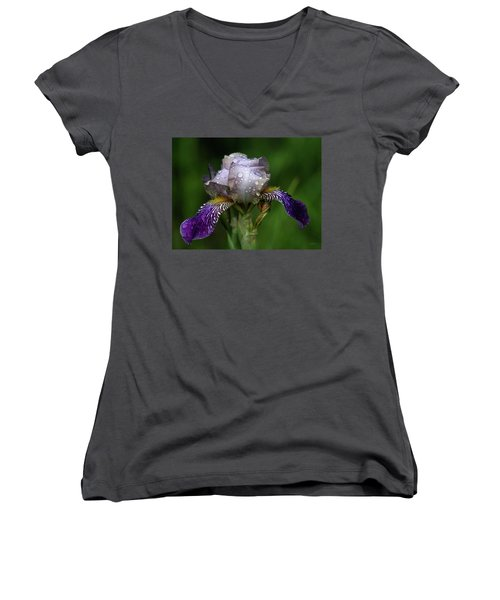 Iris After The Rain 1409 H_2 Women's V-Neck (Athletic Fit)