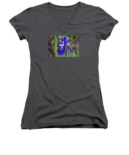 Iris Women's V-Neck T-Shirt (Junior Cut) by Dan Hefle