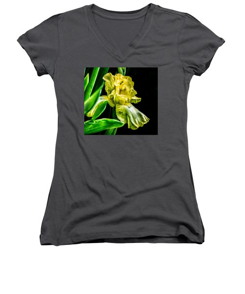 Iris In Bloom Women's V-Neck T-Shirt