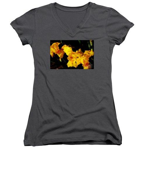 Irises Women's V-Neck T-Shirt (Junior Cut) by David Blank