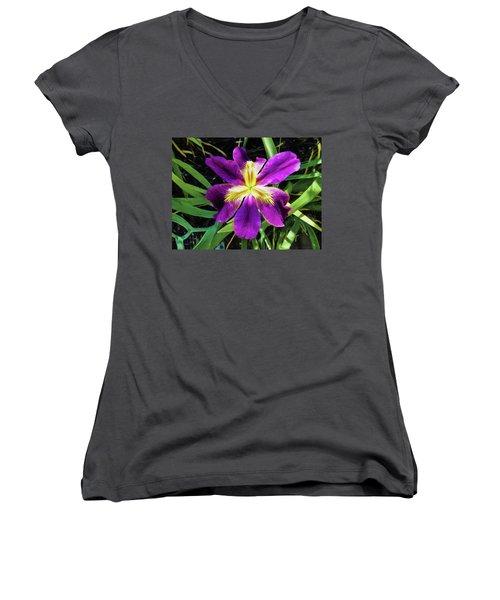 Island Iris 2 Women's V-Neck T-Shirt (Junior Cut) by Penny Lisowski