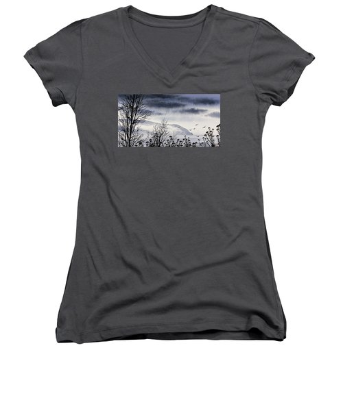 Women's V-Neck T-Shirt (Junior Cut) featuring the painting Island Solitude by James Williamson