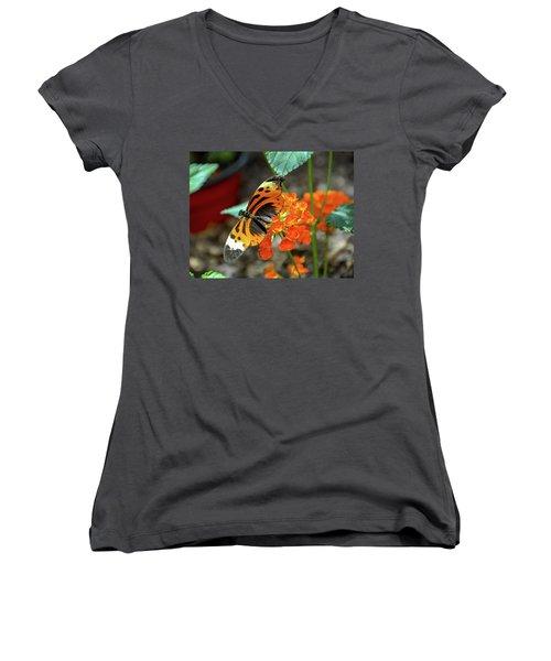 Ismenius Tiger Butterfly Women's V-Neck