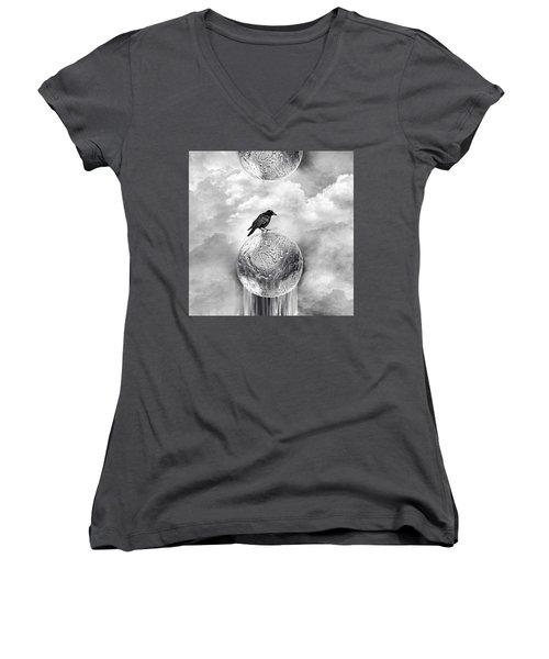 It's A Crow's World Women's V-Neck