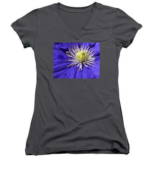 It's A Purple World Women's V-Neck T-Shirt