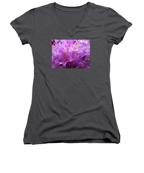 It's A Rainy Day Women's V-Neck T-Shirt