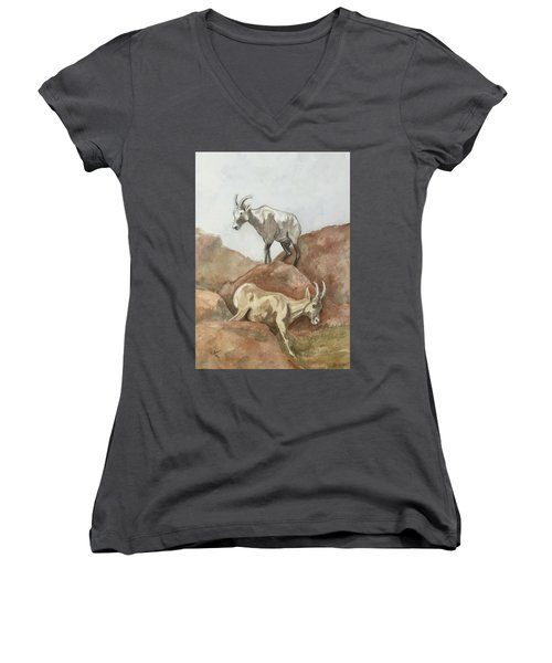 Its All Downhill Women's V-Neck T-Shirt