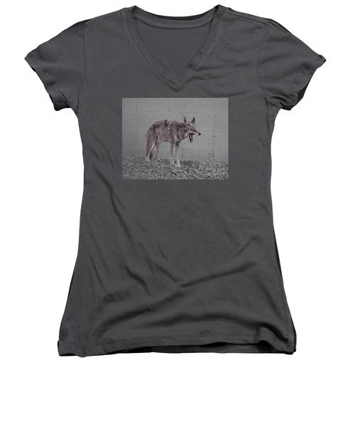 Women's V-Neck T-Shirt (Junior Cut) featuring the photograph It's Been A Rough Day by Anne Rodkin