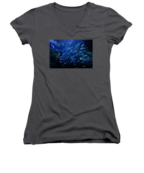 Women's V-Neck T-Shirt (Junior Cut) featuring the photograph It's Time For School by Linda Unger