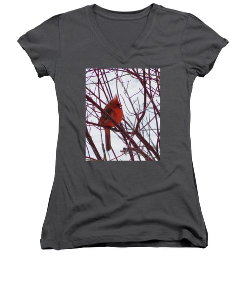 Blending In Women's V-Neck (Athletic Fit)