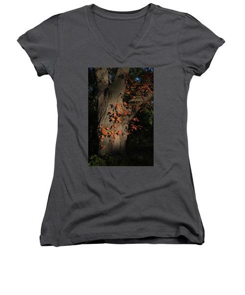 Ivy In The Fall Women's V-Neck (Athletic Fit)