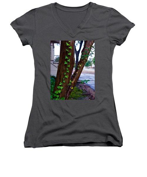 Ivy In Williamsburg Women's V-Neck T-Shirt