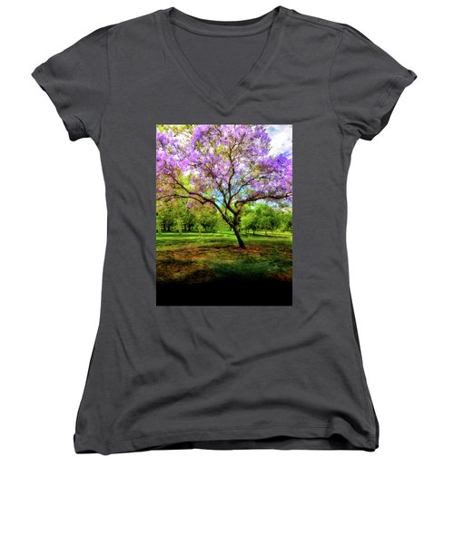 Jacaranda Tree Women's V-Neck T-Shirt (Junior Cut) by Joseph Hollingsworth