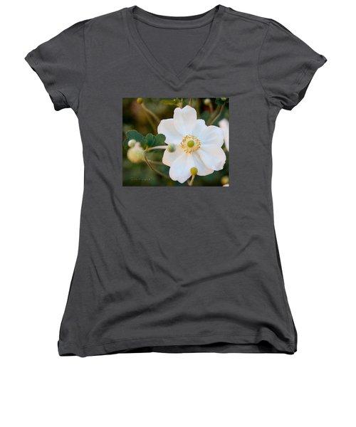 Japanese Anemone Women's V-Neck T-Shirt (Junior Cut) by Terri Harper