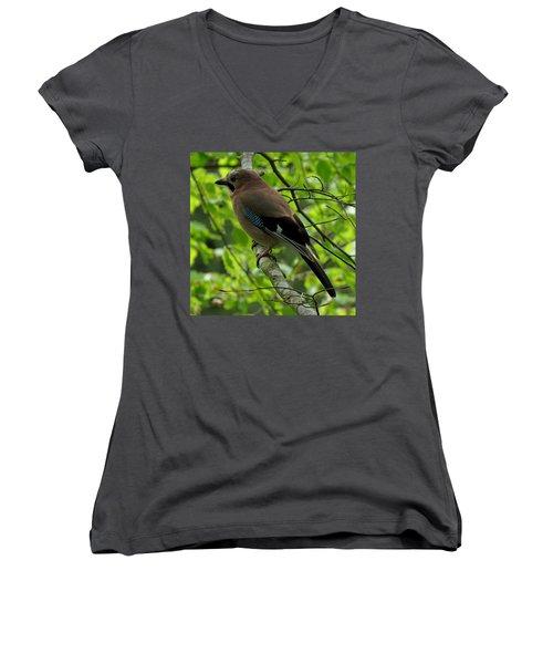 Jay Women's V-Neck T-Shirt