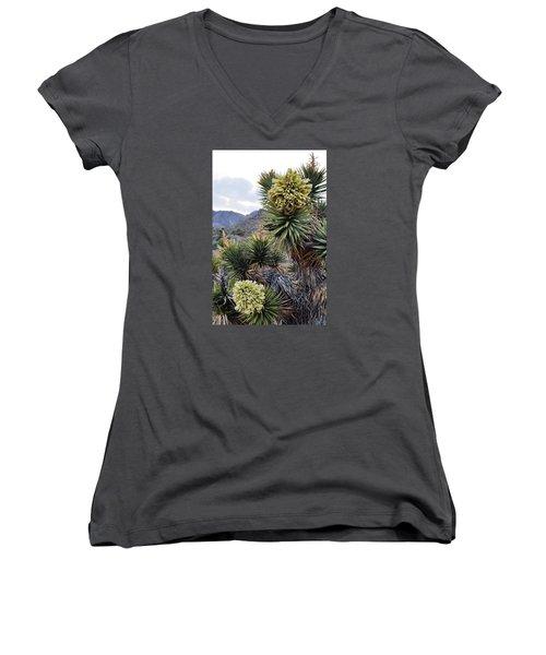 Joshua Tree Bloom Rainbow Mountain Women's V-Neck T-Shirt (Junior Cut) by Kyle Hanson