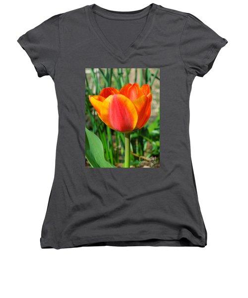 Joyful Tulip Women's V-Neck T-Shirt