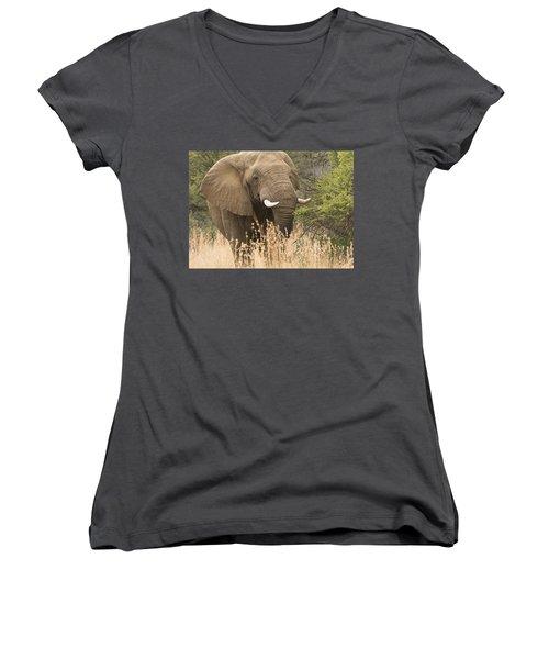 Jumbo Women's V-Neck T-Shirt