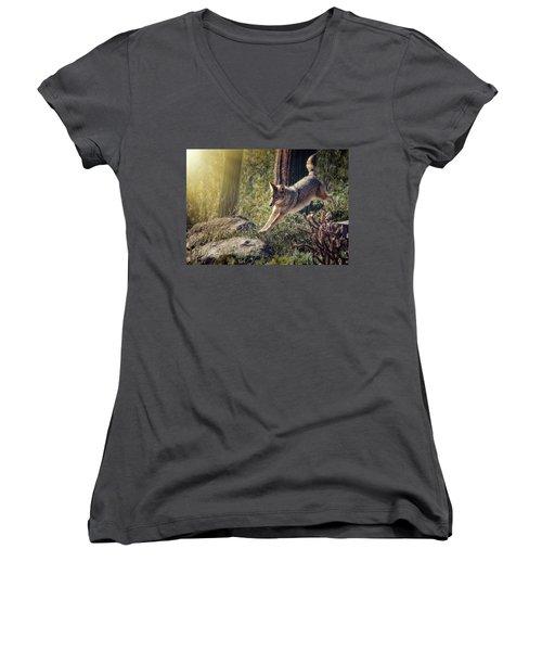 Jumping Rocks Women's V-Neck T-Shirt (Junior Cut) by Elaine Malott