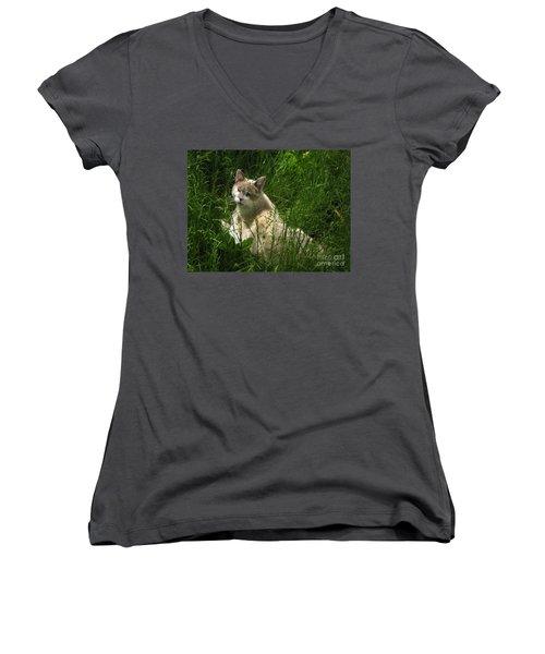 Jungle Cat Women's V-Neck T-Shirt (Junior Cut) by Sandy McIntire