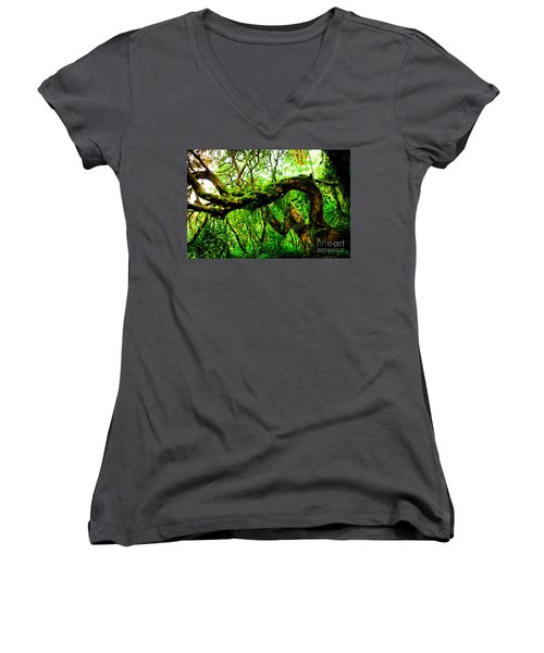 Jungle Forest Himalayas Mountain Nepal Women's V-Neck