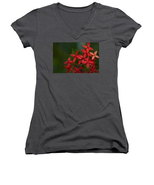 Jungle Geranium Women's V-Neck T-Shirt (Junior Cut) by Marlo Horne
