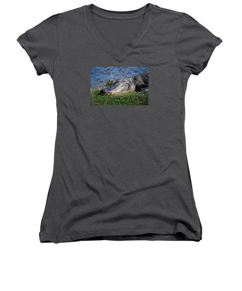 Just A Few Steps Closer Dear Women's V-Neck T-Shirt