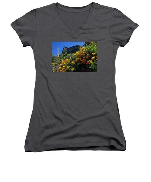 Just A Little Sunshine Women's V-Neck T-Shirt (Junior Cut) by Lucinda Walter
