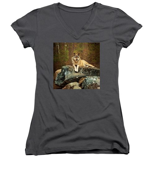 Just Chilling Women's V-Neck