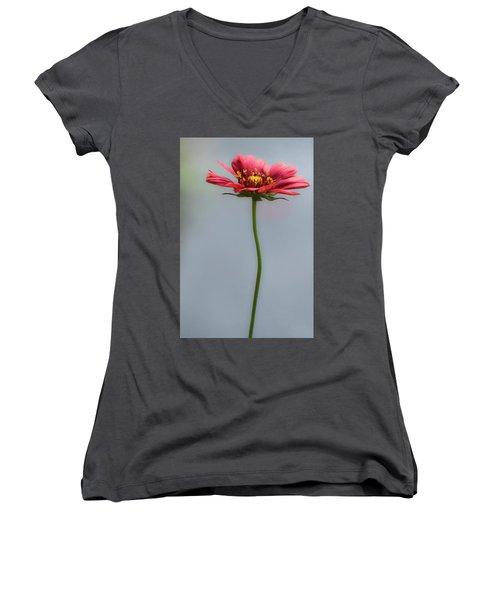 Just For You Women's V-Neck (Athletic Fit)