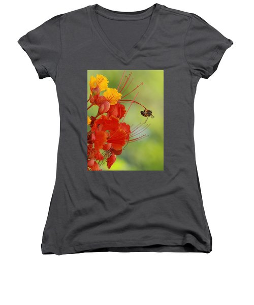 Just Hanging Around Women's V-Neck (Athletic Fit)