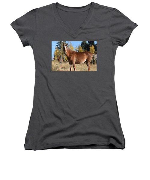Horse Cr 511 Divide Co Women's V-Neck