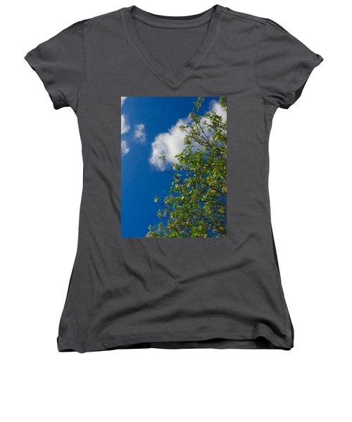 Just In Passing Women's V-Neck T-Shirt
