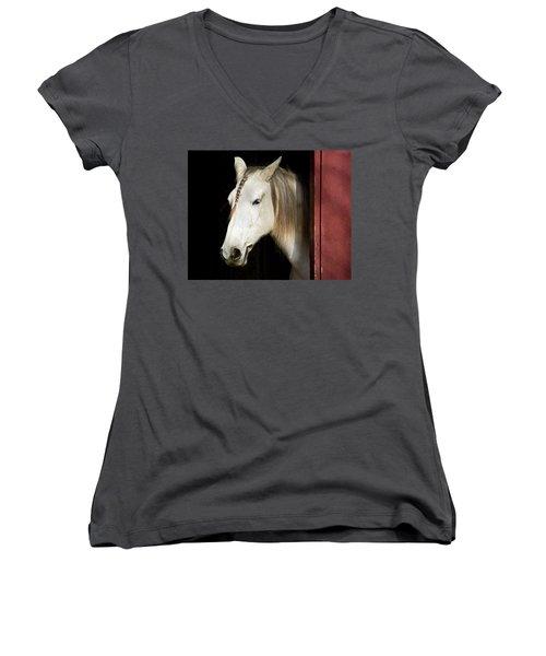 Just Peeking Women's V-Neck T-Shirt