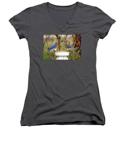 Just The Two Of Us Women's V-Neck T-Shirt (Junior Cut) by Bill Pevlor
